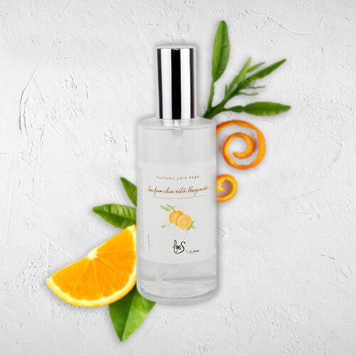 Perfume de hogar en spray aroma La familia está llegando LOES