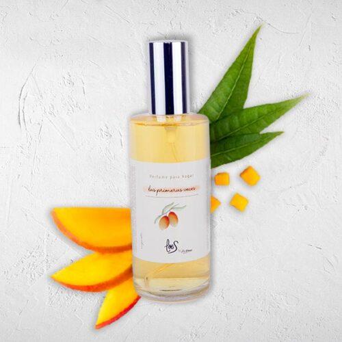 Perfume de hogar en spray aroma Las primeras vecesLOES