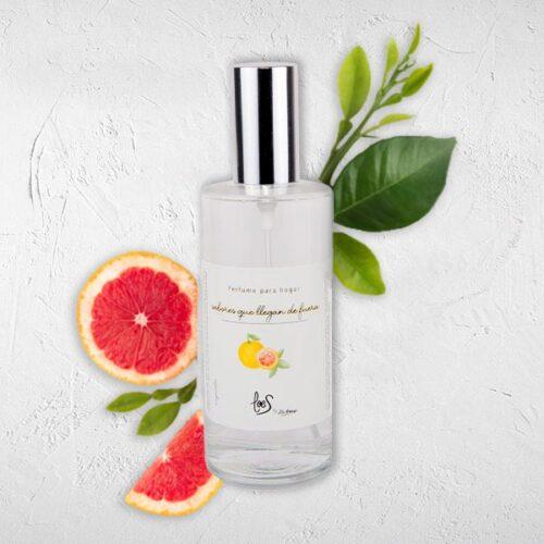 Perfume de hogar en spray aroma Sabores que llegan de fuera LOES